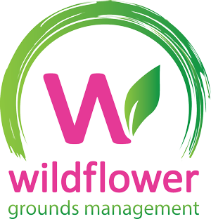 Wildflower Grounds Management